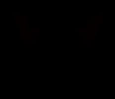 スカル(髑髏)をモチーフにイラストを制作