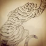 #虎 #tiger
