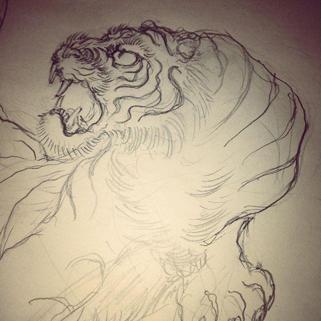 最近の下絵 #tiger