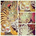 #虎 #tiger #龍 #dragon #刺青 #tatoo #菊