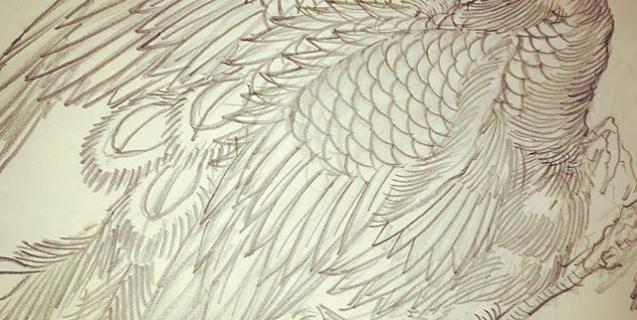 鳳凰二枚目。#phoenix #japanesephoenix #鳳凰 #和柄#japanesetraditional #和風 #japanesestyle #刺繍 #embroidery #tattoo #刺青 #パス #パス化 #vector  #vectorart